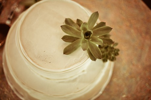 andy jamie simple vintage folksy handmade DIY casual budget wedding goodwill thrifted thrifting succulent centerpiece centerpie