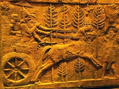 King Sharru-kinu II in Chariot (Ramen Rehana) Tags: horse chicago king iraq institute oriental chariot assyrian sargon khorsabad sharrukin dursharrukin