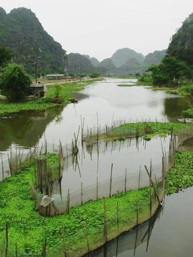 V-Ninh Binh (4)