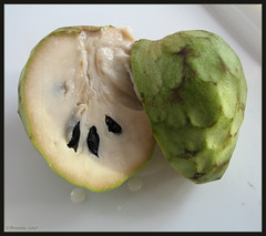 Chirimoya or Cherimoya (Annieta  - home, catching up soon...) Tags: november espaa food color colour nature fruit automne canon ilovenature spain novembre sweet natuur powershot delicious g2 colori coolest spanien allrightsreserved spanje 2007 yummie ilovephotography kleur costablanca powershotg2 cherimoya canonpowershotg2 lamarina chirimoya vrucht annieta theworldthroughmyeyes thebiggestgroup kakadoo mywinners mywinner abigfave usingthisphotowithoutpermissionisillegal