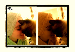 Besitos (aunqtunolosepas) Tags: ladies girls pet pets cute love me girl animal animals lady bathroom bath feline kiss chica phone bea you sweet yo movil kisses gatos cutie wash gato both missy gata felinos felino chicas felines animales lovely cuteness tu soe bao mascota mascotas tender beso tenderness gatita besos besitos toalla ternura carios tierno cario diptico blueribbonwinner ambas abigfave kissablekat shieldofexcellence impressedbeauty aunqtunolosepas diamondclassphotographer flickrdiamond
