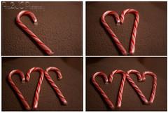 cwd47: Candy Cane Quadtych (Free2bJ.C.Photos) Tags: red white hearts candy candycane peppermint cwd canon50mmf18ii rawformat christmas2007 canonrebelxti classwithdavedave onlythebestare cwd47 allimagesareprotectedundertheunitedstatesandinternationalcopyrightlawsandmaynotbedownloadedreproducedcopiedtransmittedormanipulatedwithoutwrittenpermission ifyoupostphotosinyourcommentsonmyphotospleasemakesuretheyaretheflickrsmallsizethanksifyoupostlargersizeireservetherighttodeleteyourcomment