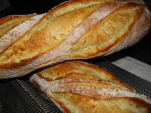 baguette, kneadless