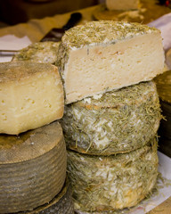 Rosemary coated cheese