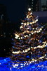 星の海のクリスマスツリー