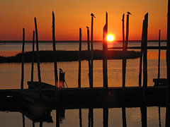 Sunset Grackles (magarell) Tags: sunset marina shadows nj marsh oceancounty grackles tuckerton greatbayboulevard