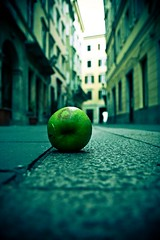 Lonely Taste (Matteo Crema) Tags: street apple fruit lomo lomography strada shots ground solo lonely taste terra frutta gusto solitario trieste mela pavimento excapture