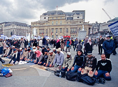 Muslims against the Danish cartoons