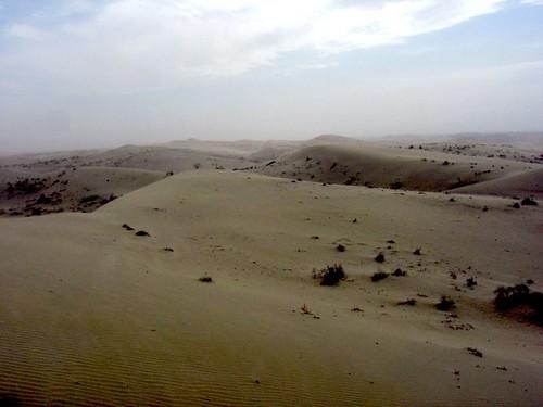 desert sol -Taklamakan