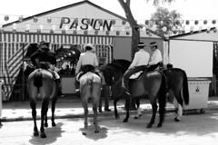 los caballos y pasion (mirimil) Tags: caballo feria niña flamenca doshermanas galope urbanblackandwhite