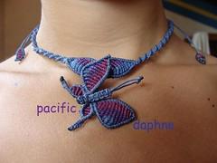 Mariposa de Macrame (pacificdaphne) Tags: colombia handmade macrame makrame artesania caribe hechoamano macramé χειροποίητο μακραμέ caminomojosmayo