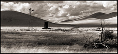 in search of self (stormiticus) Tags: blackandwhite bw foothills film analog kodak panoramic 300mm nikkor grasslands centralvalley santanella 5x7 txp pyrocathd
