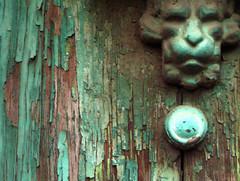 Leone il Burbero aspetta la carezza di Dorothy (SciraC - a forza di essere vento) Tags: pietralata leonealato