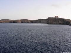 DSCN2574 (L-Aħrax tal-Għajn, Malta) Photo