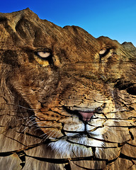 Desert Lion (ViaMoi) Tags: blue sky mountains color colour art digital photoshop outdoors photography desert mud image ottawa lion scenic dry dirt photograph drought remote desolate barren arid cracked viamoi s2wrap