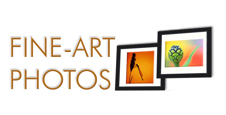 Fine ART photos