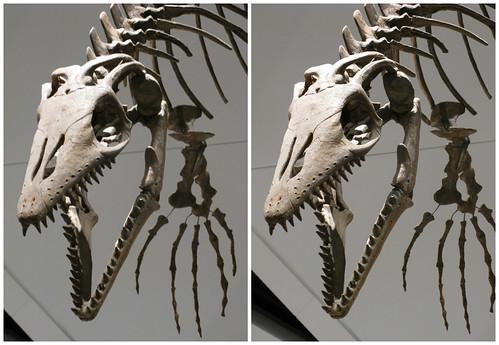 3D Dinosaur 06