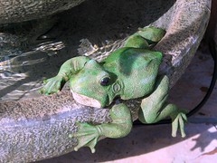 It's Not That Easy....Being Green.. (ZanderVision) Tags: california green january frog outdoorart girlsweekend ilovegreen kermitsong