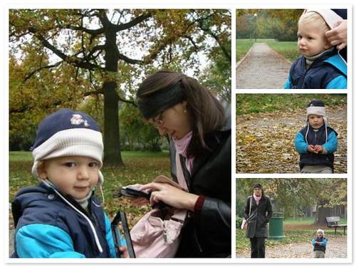 你拍攝的 olomouc 公園。