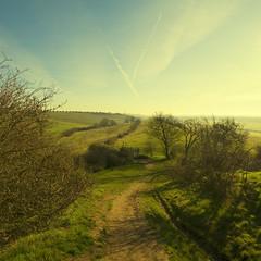 Looking eastward from Hadleigh Castle