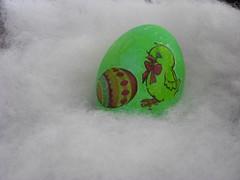 Chick w Egg
