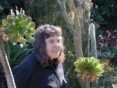 Lia for scale October 21, 2007 (serialplantfetishist) Tags: california berkeley homegarden aeoniumarboreum