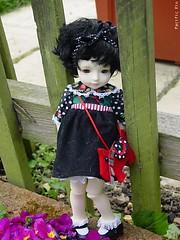 scottie: wearing scottydog (pacific_rin) Tags: gabriel doll april2005 scottie balljointeddoll petiteai customhouse
