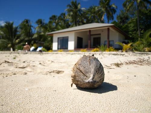 La coco du bungalow