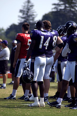 Ravens Training Camp (7/28/2008)