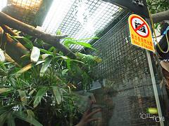 20110602酷節能體驗營 (56) (fifi_chiang) Tags: zoo taiwan olympus taipei ep1 木柵動物園 17mm 環保局 酷節能體驗營