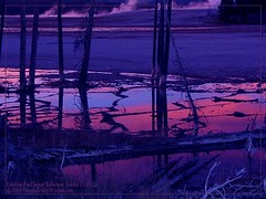 Celestine Pool Sunset Reflection (firstsheaf) Tags: oneofakind soe magiceye scripture bestofflickr deadtrees goldenglobe blueribbonwinner yellowstonepark magentablue sheildofexcellence impressedbeauty flickrhearts isawyou