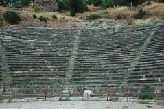 Theatre of Delphi (Mr G's Travels) Tags: oracle theatre delphi greece apollo templeofapollo archaeologicalsite  delphigreece theatreatdelphi mrgstravels