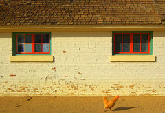 chicken n barn (dora31) Tags: arizona colorphotoaward