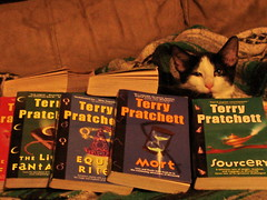 NeilGaiman the Cat enjoying a  fellow authors work