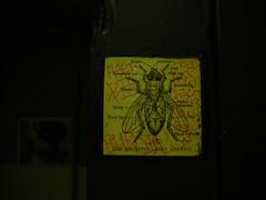 11/10/07 Capitol Theater (sixheadedgoblin) Tags: bathroom washington sticker kick alien josh mezzanine fred olympia scrawl publicart pow olympiawashington joins 113 capitoltheater