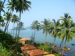 Exotica (Kaushal Karkhanis) Tags: travel india beach goa palm hut palolem
