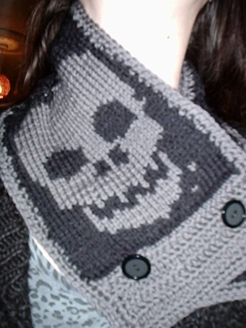 Ravelry Double Knit Skull Scarf Pattern By Sabrinajl