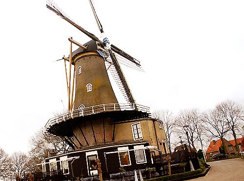 Bernisse Molen-Geervliet-071127