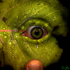 Acid Tears (ViaMoi) Tags: macro eye art rain digital photoshop canon drops acid manipulate viamoi