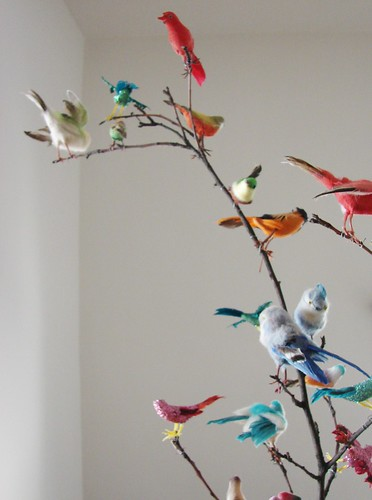 Vintage bird collection by hownowdesign.