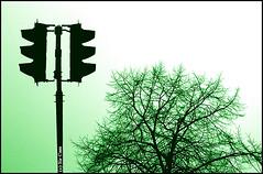 Traffic light smiles (Sir Cam) Tags: cambridge england tree green smile lights traffic pedestrian supershot eastroad sircam mywinners abigfave