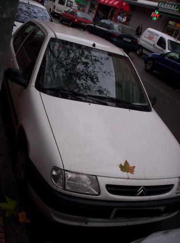 El coche de mis amores