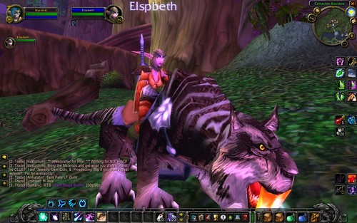 world of warcraft night elf mount. level 40 night elf warrior now