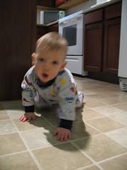 I am gonna get that camera! (team_bricker) Tags: feb2008