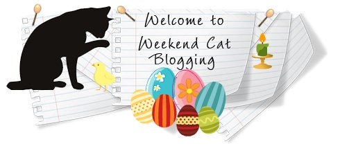 Weekend Cat Blogging