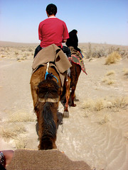 Camel Riding! (Alieh) Tags: persian desert iran riding camel iranian  esfahan isfahan   aliehs alieh           natanzkashan  iranmapcom