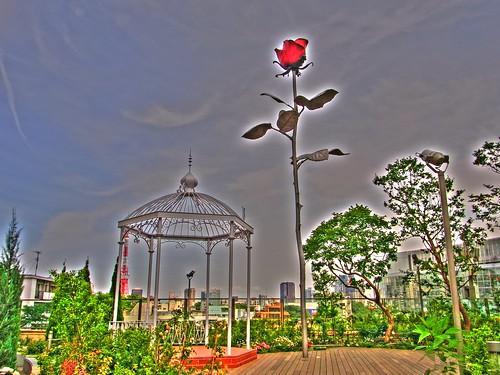 Rose of Roppongi Hills