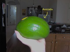 Store Bought Avocado