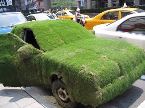 Crazy Grass-Covered Car