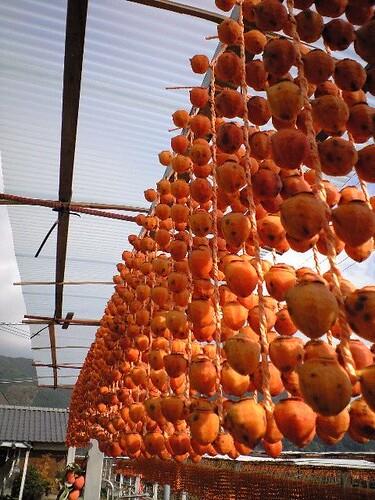 干し柿│食べ物│無料写真素材